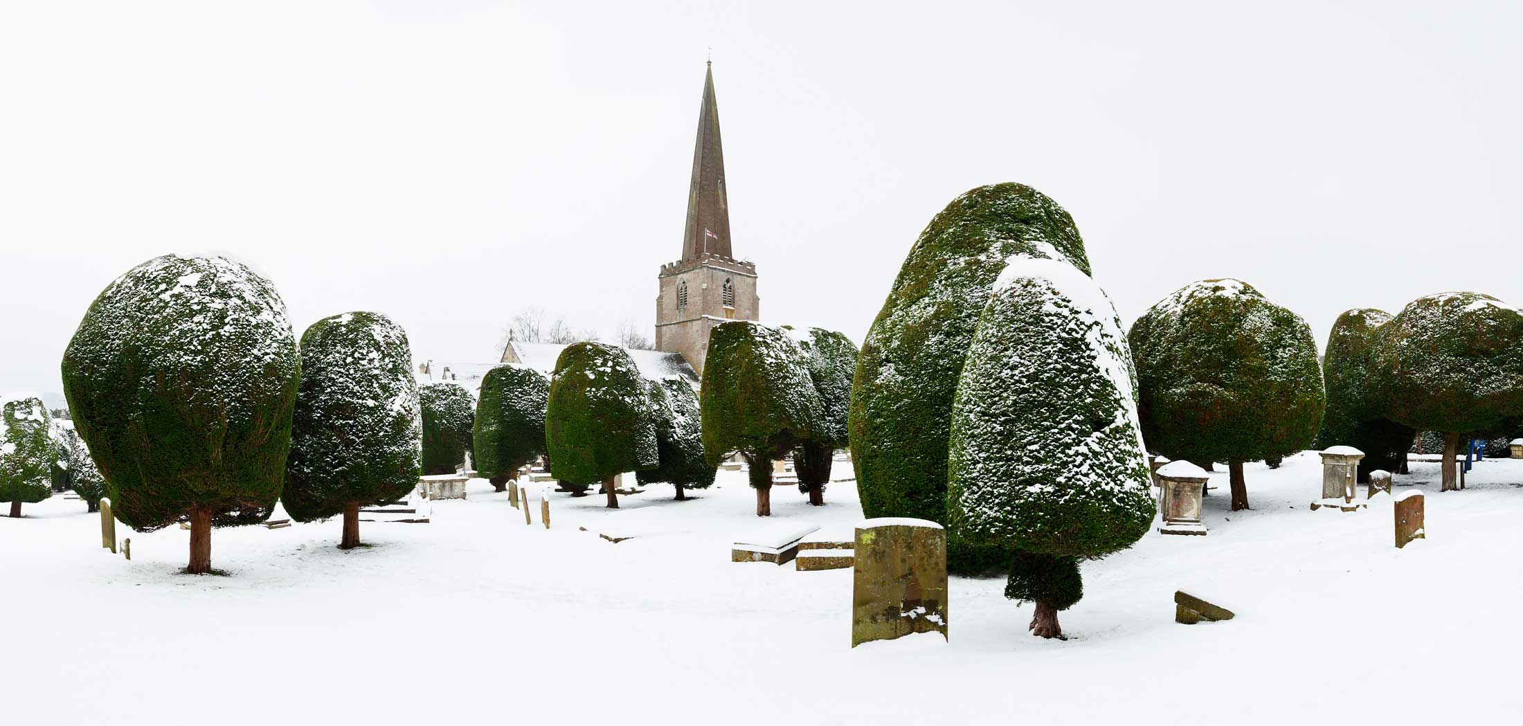 Yew Trees and Church in Snow